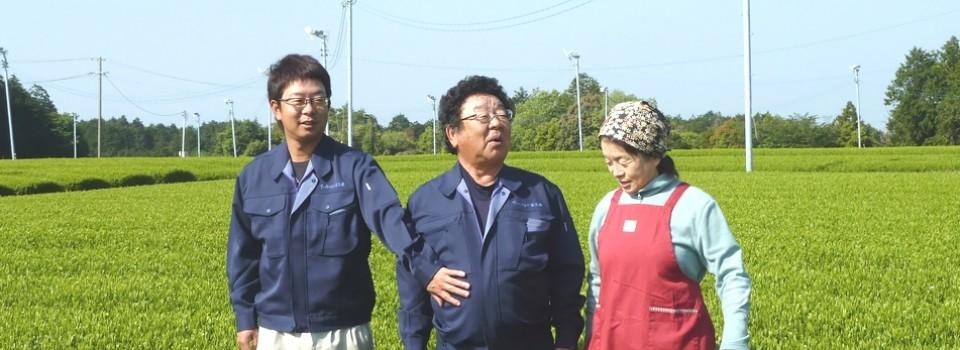 飲んで納得、買って満足のお茶づくり。静岡県牧之原市 てっちゃんの茶工房。